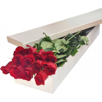Box 12 red roses